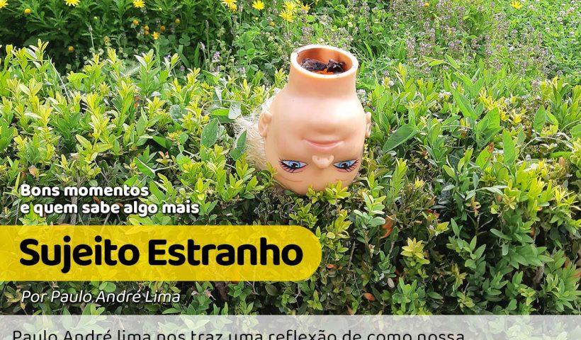Na foto tem uma cabeça de boneca em campo gramado mostrando uma certa sensação de inadequação, como se não fosse para estar ali.