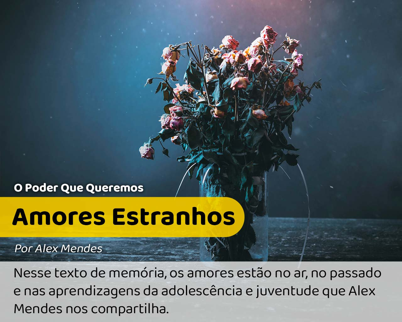 Foto: Flores murchas como de amores estranhos.